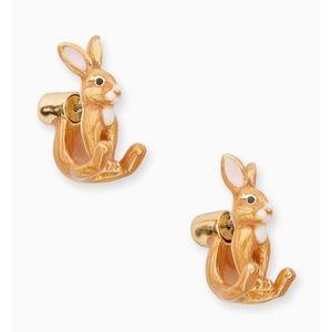 kate spade Jewelry - Kate Spade Desert Muse Ear Jackets Earrings